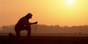 Farmer kneeling in a field while sifting dirt at sunrise