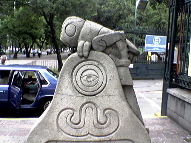 Chapulin MAM MExico 1