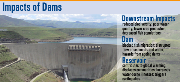 impacts of dams